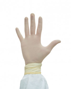 Disposable Latex Gloves - Powder Free